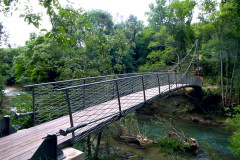 L Argens Foot Bridge 01s